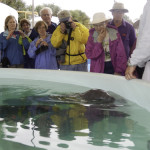The group visited four baby manatees in the rehabilitation areas at SeaWorld.